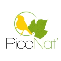 Logo pico nat association54d12146de864